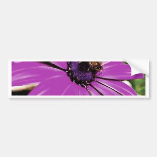 Honey Bee On a Spring Flower Bumper Sticker