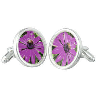 Honey Bee On a Spring Flower Cufflinks