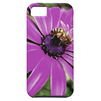 Honey Bee On a Spring Flower iPhone 5 Case