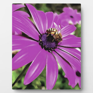 Honey Bee On a Spring Flower Plaque