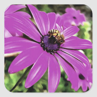 Honey Bee On a Spring Flower Square Sticker