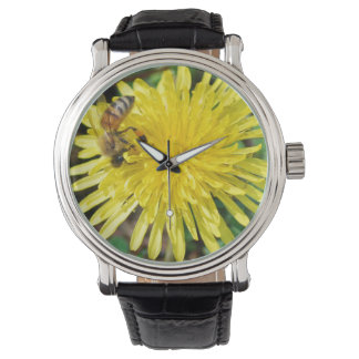 Honey Bee on Dandelion Watch