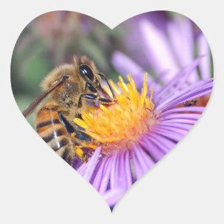 Honey Bee on Purple Pink Flower Sticker