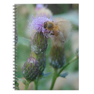 Honey Bee on Thistles Notebook