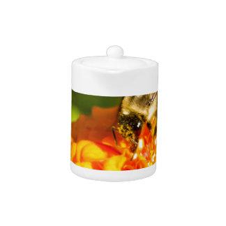 Honey Bee  Orange Yellow Flower With Pollen Sacs