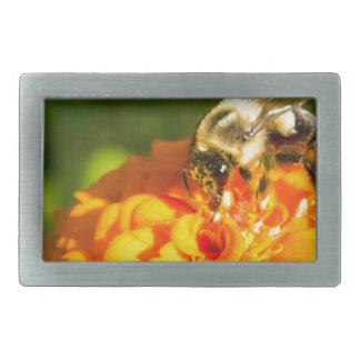 Honey Bee  Orange Yellow Flower With Pollen Sacs Belt Buckle