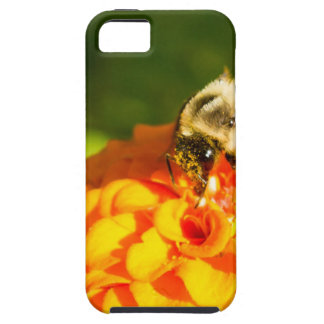 Honey Bee  Orange Yellow Flower With Pollen Sacs Case For The iPhone 5