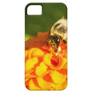 Honey Bee  Orange Yellow Flower With Pollen Sacs iPhone 5 Case