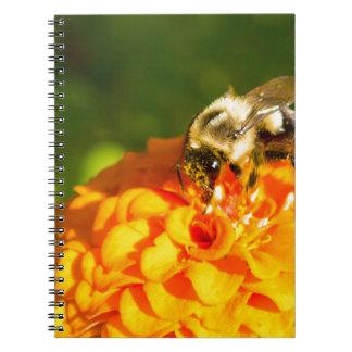 Honey Bee  Orange Yellow Flower With Pollen Sacs Notebook