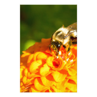 Honey Bee  Orange Yellow Flower With Pollen Sacs Stationery Paper