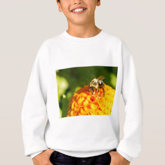 Honey Bee  Orange Yellow Flower With Pollen Sacs Sweatshirt