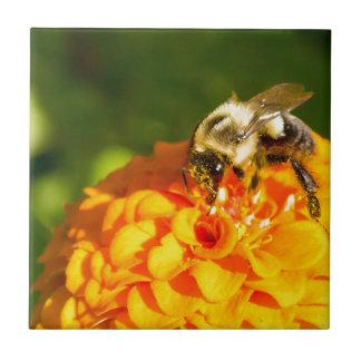 Honey Bee  Orange Yellow Flower With Pollen Sacs Tile