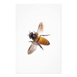 Honey Bee Stationery