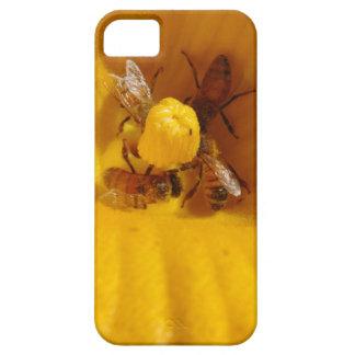 Honey Bee Traffic Jam iPhone 5 Cover