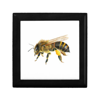Honey Bee Watercolour Painting Artwork Print Gift Boxes