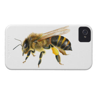 Honey Bee Watercolour Painting Artwork Print iPhone 4 Case-Mate Cases