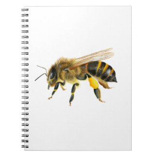 Honey Bee Watercolour Painting Artwork Print Spiral Notebook