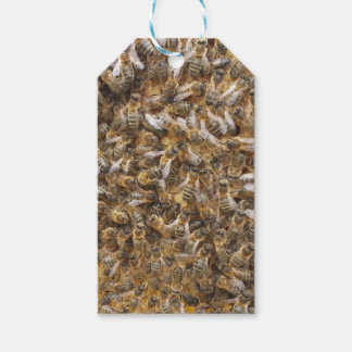 honey bees and more honey bees pack of gift tags
