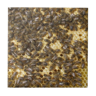 Honey Bees everywhere Tile