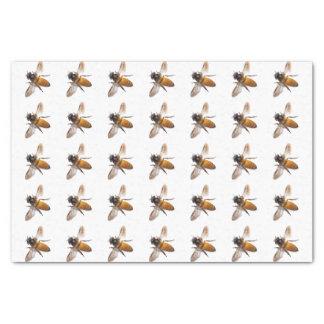 Honey Bee's Tissue Paper