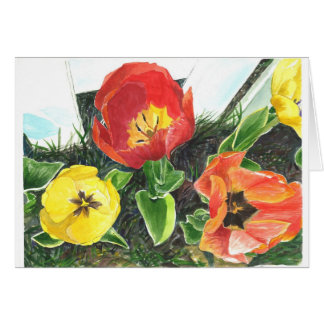 Honey bee's view of tulips of late spring card