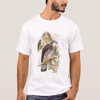 Honey-Buzzard John Gould Birds of Great Britain T-Shirt
