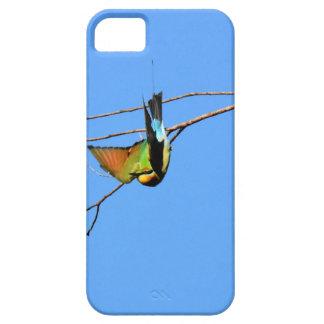 HONEY EATER RURAL QUEENSLAND AUSTRALIA CASE FOR THE iPhone 5