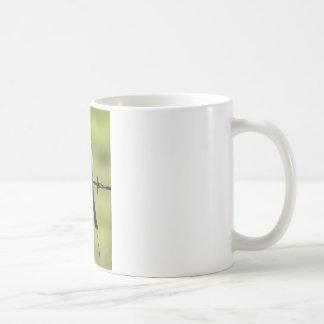 HONEY EATER RURAL QUEENSLAND AUSTRALIA COFFEE MUG