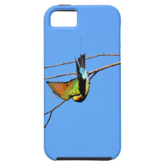 HONEY EATER RURAL QUEENSLAND AUSTRALIA iPhone 5 CASE