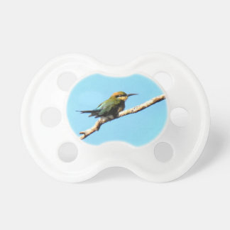 HONEY EATER RURAL QUEENSLAND AUSTRALIA PACIFIER