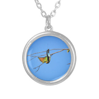 HONEY EATER RURAL QUEENSLAND AUSTRALIA SILVER PLATED NECKLACE