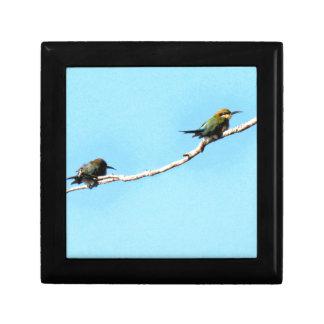 HONEY ETAER BIRD QUEENSLAND AUSTRALIA GIFT BOX