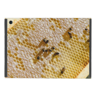 Honey Love iPad Mini Covers