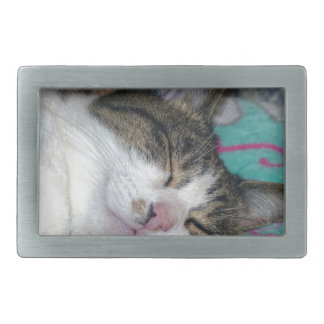 Honey Sleeping Belt Buckle