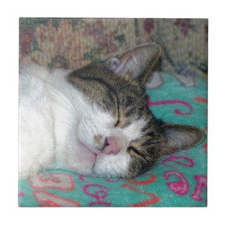 Honey Sleeping Tile
