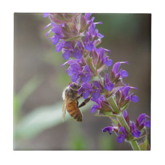 Honeybee on Salvia Tile
