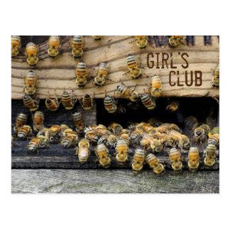 Honeybees ... girls club postcard