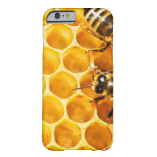 Honeycomb and Bees Pattern Design Barely There iPhone 6 Case