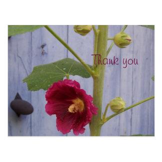 Honeysuccle thank you postcard