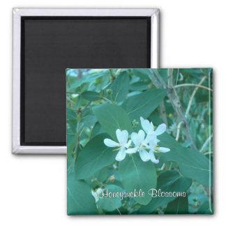 Honeysuckle Blossoms Square Magnet