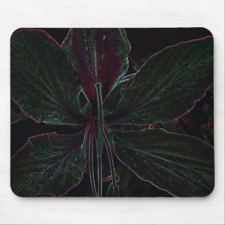 Hong Kong Orchid Tree flower mouse pad