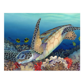 Honu (Green Sea Turtle) Postcard