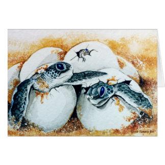 Honu Hatchlings Card