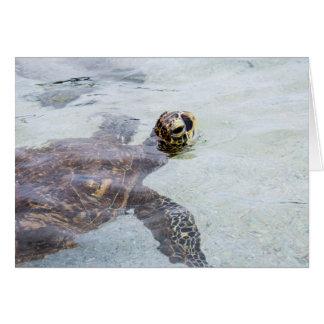 Honu Hawaiian Sea Turtle - Hawaii Turtles Card