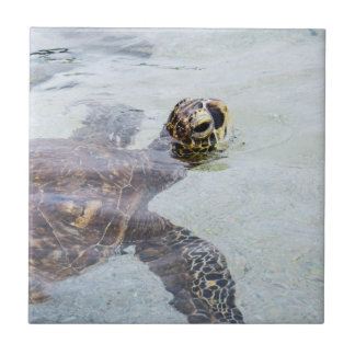 Honu Hawaiian Sea Turtle - Hawaii Turtles Tile
