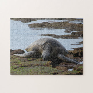 Honu Resting on the Warm Rocks Jigsaw Puzzle