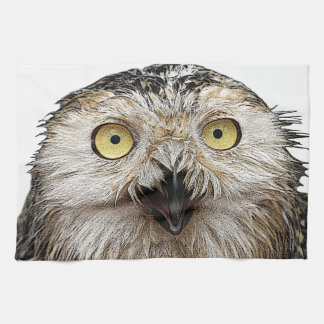 Hoo Are You? Owl Who Are You? Kitchen Towel