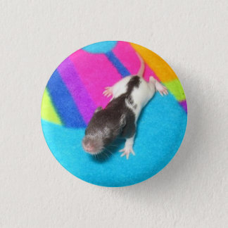 Hooded Baby Rat 1 Inch Round Button