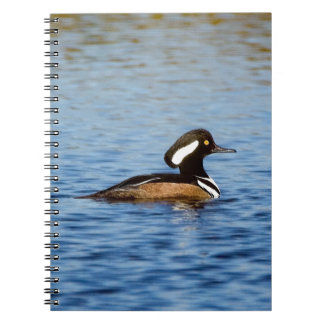 Hooded Merganser Drake Notebook