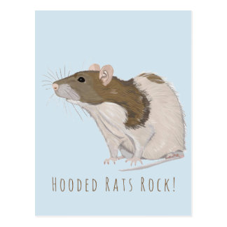 Hooded Rats Rock Agouti Hooded Rat Postcard